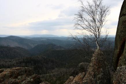 "Ausblick vom 90 m hohen Stolby ""Second Pillar"""