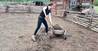 Unsere Aufgaben auf der Farm: Ställe ausmisten