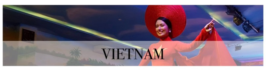 Teaser_Vietnam.001