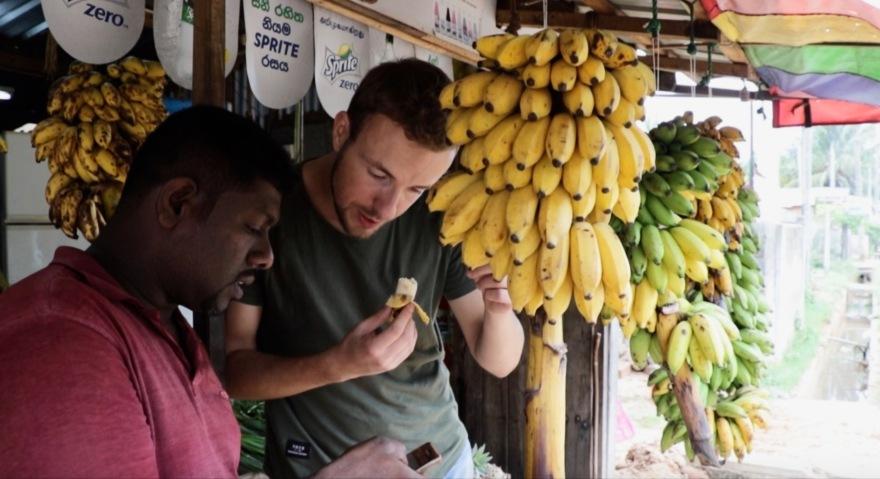 bananenexperten