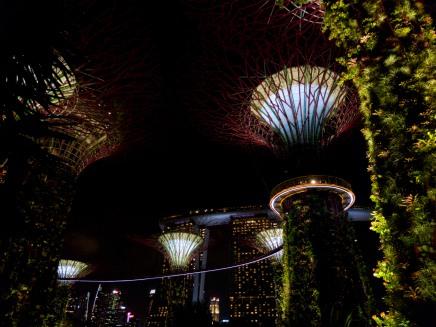 Singapurs Supertrees von unten mit Blick auf das Marina Bay Sands Hotel