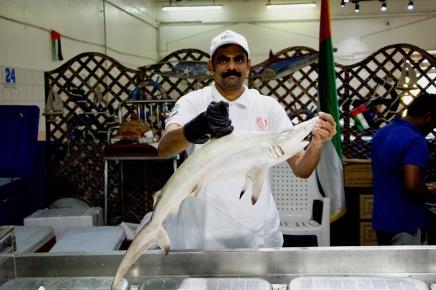 Ja, es ist ein Hai! Fisch-Souk in Abu Dhabi
